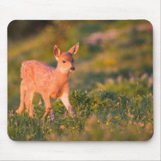 Black-tailed Deer fawn Mouse Mat