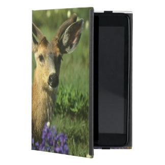 Black-tailed Deer, Odocoileus hemionus), in Case For iPad Mini