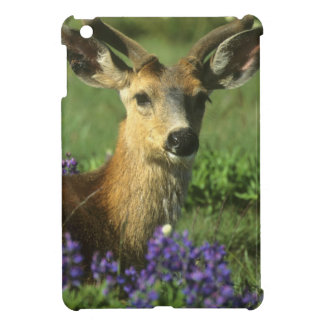 Black-tailed Deer, Odocoileus hemionus), in Case For The iPad Mini