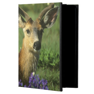 Black-tailed Deer, Odocoileus hemionus), in iPad Air Cover