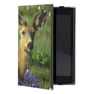 Black-tailed Deer, Odocoileus hemionus), in iPad Mini Covers