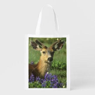 Black-tailed Deer, Odocoileus hemionus), in Reusable Grocery Bag