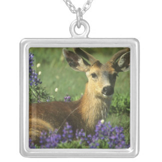 Black-tailed Deer, Odocoileus hemionus), in Square Pendant Necklace