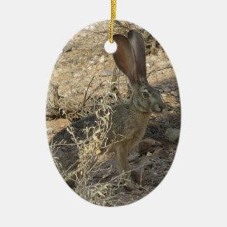 Black-tailed Jackrabbit Ceramic Oval Decoration