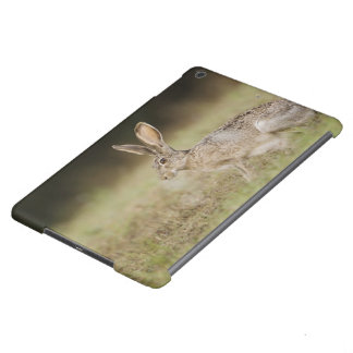 Black-tailed Jackrabbit, Lepus californicus, Cover For iPad Air