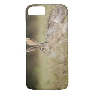 Black-tailed Jackrabbit, Lepus californicus, iPhone 7 Case
