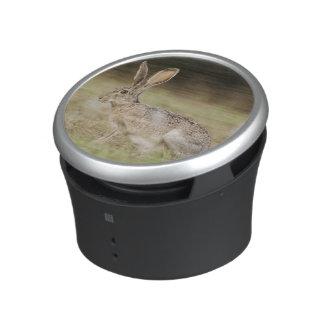Black-tailed Jackrabbit, Lepus californicus, Bluetooth Speaker