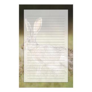 Black-tailed Jackrabbit, Lepus californicus, Personalised Stationery