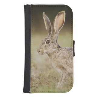 Black-tailed Jackrabbit, Lepus californicus, Samsung S4 Wallet Case