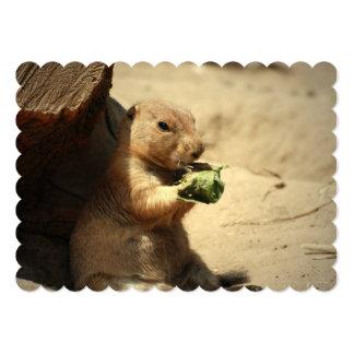 black-tailed-prairie-dog-26.jpg 13 cm x 18 cm invitation card
