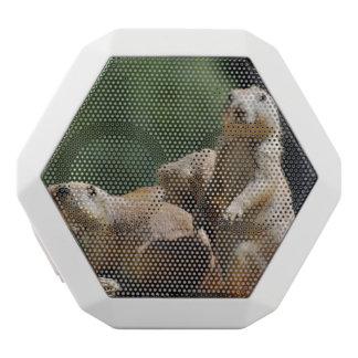 Black Tailed Prairie Dog White Boombot Rex Bluetooth Speaker