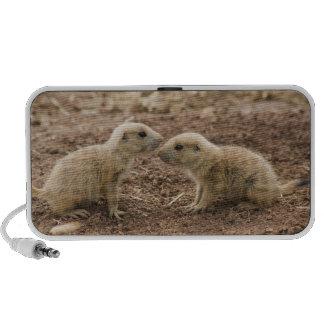 Black Tailed Prarie Marmot Portable Speakers
