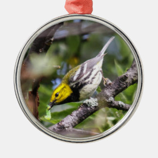 Black-throated Green Warbler Christmas Ornament