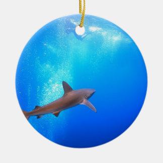 Black-tip reef shark swimming underwater christmas ornament