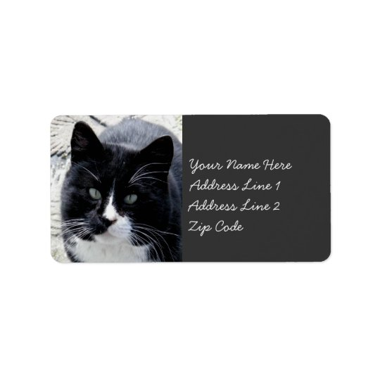 Black Tom Cat with White Markings Address Label