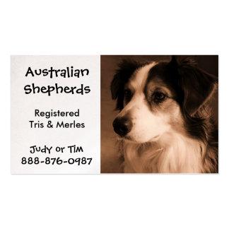 Black Tricolored Australian Shepherd Breeding Pack Of Standard Business Cards
