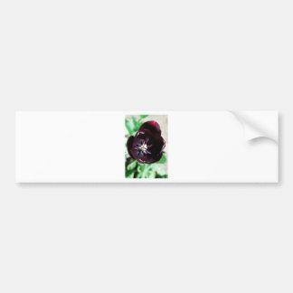 Black tulip macro bumper sticker