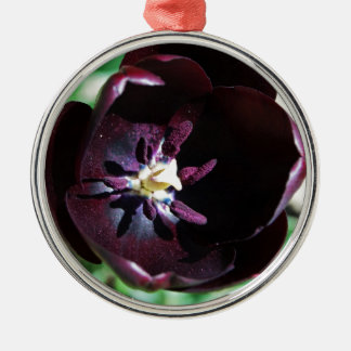 Black tulip macro christmas ornament