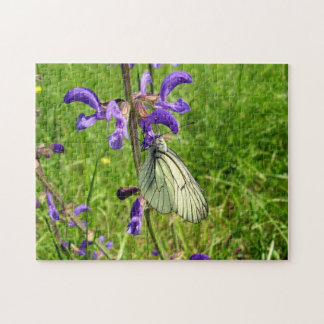 Black Veined White Butterfly Photo Puzzle