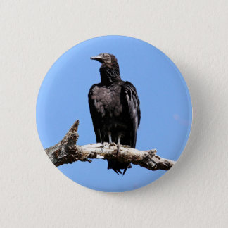 Black Vulture 6 Cm Round Badge