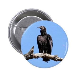 Black Vulture 6 Cm Round Badge