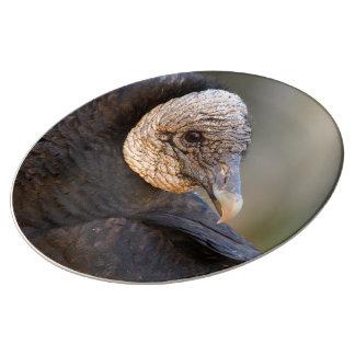 black vulture porcelain plate