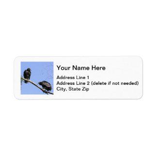 Black Vultures Return Address Label