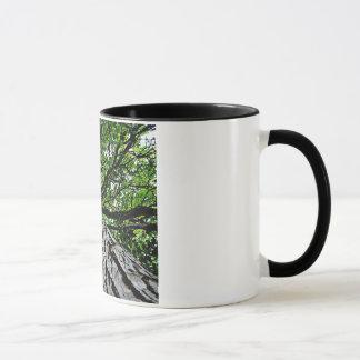 Black Walnut Trunk and Branches Mug
