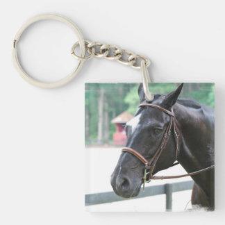 Black Warmblood Keychain Acrylic Keychain