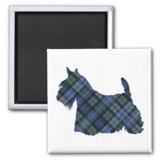 Black Watch Tartan Scottish Terrier Square Magnet