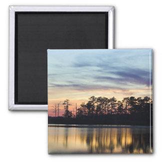 Black Water National Wildlife Refuge Square Magnet