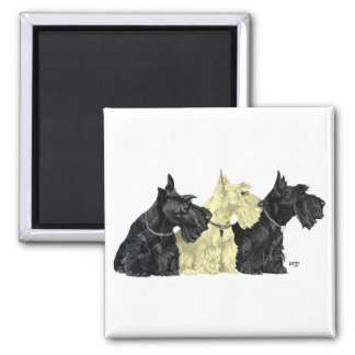 Black & Wheaten Scottish Terriers Square Magnet