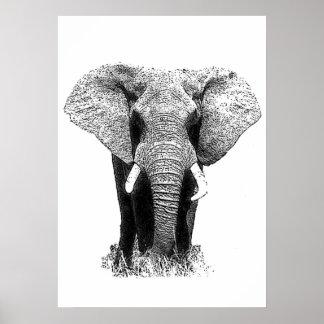 Black & White Asian Elephant Pop Art Poster