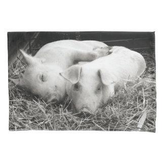 Black & White baby piglets pillow case
