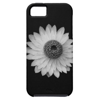 Black White Blossom Photography iPhone 5 Cases