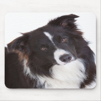 Black & White Border Collie Puppy Dog Mousepad