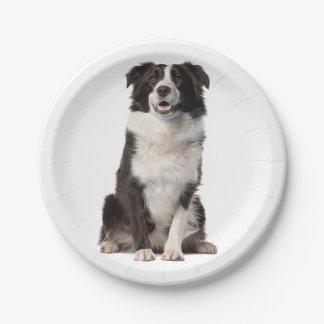 Black & White Border Collie Puppy Dog Paper Plates