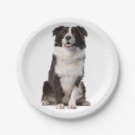 Black & White Border Collie Puppy Dog Paper