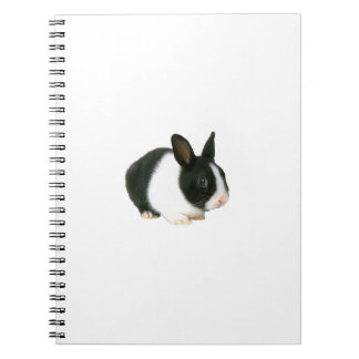 Black & White Bunny Rabbit Notebook