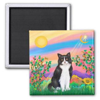 Black & White Cat - Day Star Square Magnet