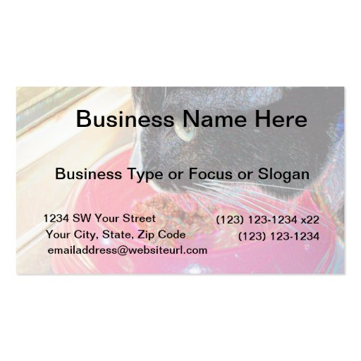 black white cat head pink bowl sparkle animal pet business card templates