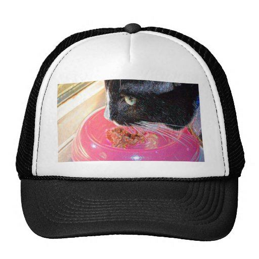 black white cat head pink bowl sparkle animal pet trucker hats