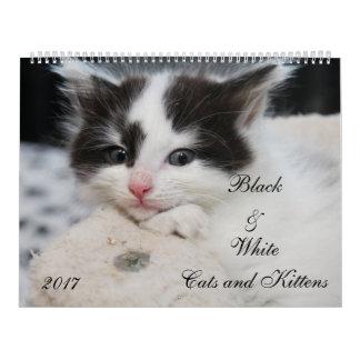 BLACK & WHITE CATS & KITTENS WALL CALENDARS