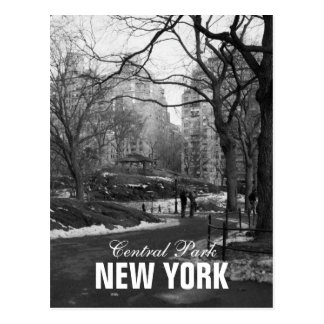 Black White Central Park New York Postcard