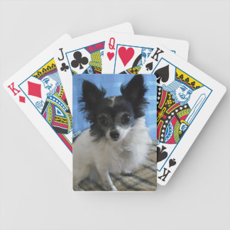 Black & White Chihuahua Dog Playing Cards