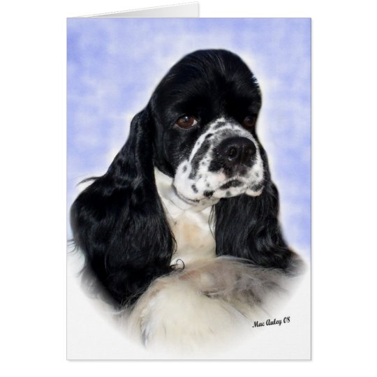 Black/white Cocker Spaniel Card