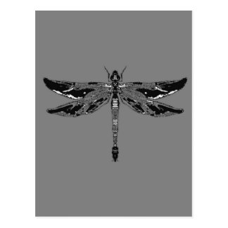 Black & White Dragonfly Grey Gifts by sharles Post Card