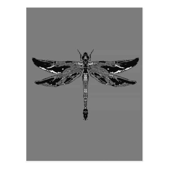 Black & White Dragonfly Grey Gifts by sharles