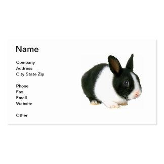 Black & White Dwarf Bunny Rabbit Business Card