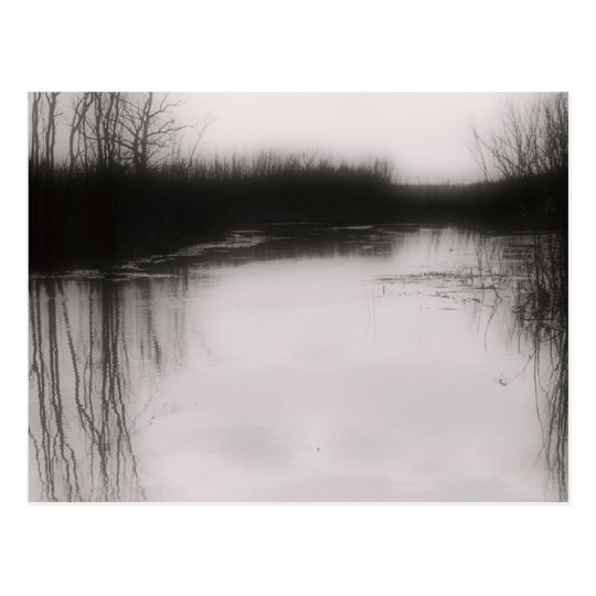 Black & White Flooded Field Postcard